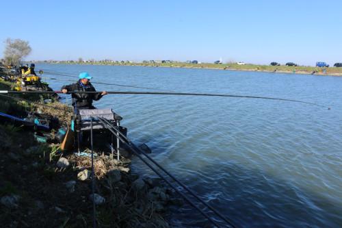 Donęcenie nie zawsze musi oznaczać dokarmianie ryb